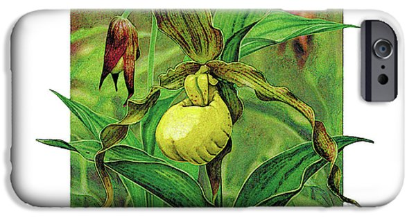 Plant iPhone Cases - Yellow Lady Slipper iPhone Case by JQ Licensing