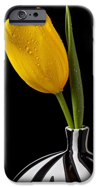 Yellow tulip in striped vase iPhone Case by Garry Gay