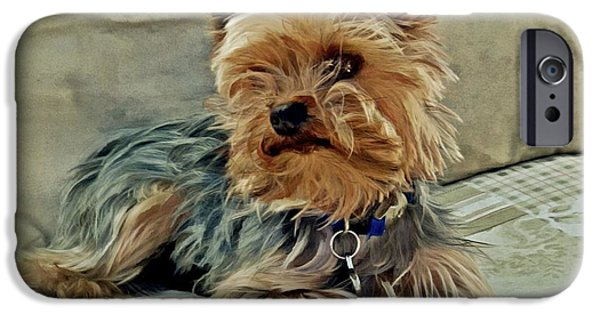 Yorkshire Terrier Watercolor iPhone Cases - Yorkie Love iPhone Case by Patricia Strand