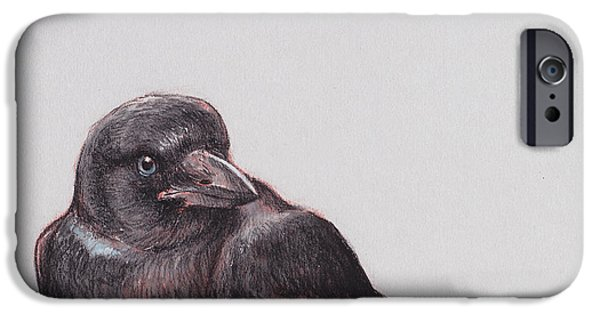 Crows iPhone Cases - Young Crow 2 iPhone Case by Tracie Thompson