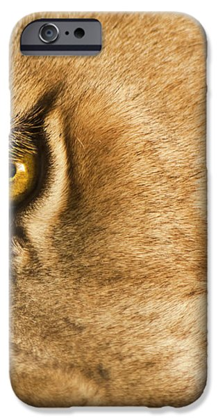 Your Lion Eye iPhone Case by Carolyn Marshall