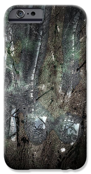 Zauberwald Vollmondnacht Magic Forest Night of the Full Moon iPhone Case by Mimulux patricia no