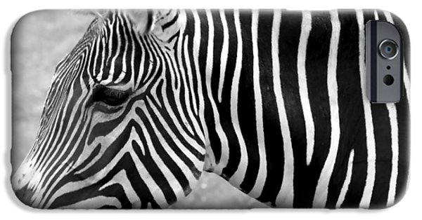 Monotone Digital iPhone Cases - Zebra - Here it is in Black and White iPhone Case by Gordon Dean II