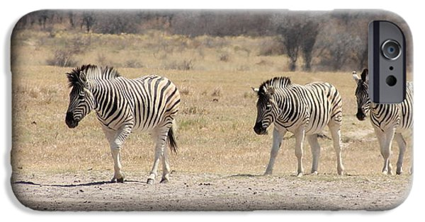 Horse iPhone Cases - Zebra following iPhone Case by Roger Brown