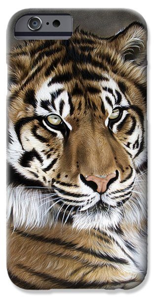 Stripes iPhone Cases - Zen iPhone Case by Sandi Baker
