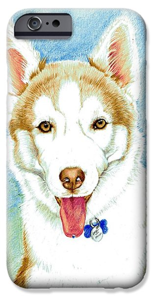 Husky Drawings iPhone Cases - Zeus iPhone Case by Mary-Anne Harding
