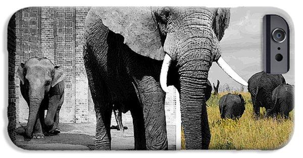 Elephants iPhone Cases - Zoo Captives Dreams iPhone Case by iina  Van Lawick