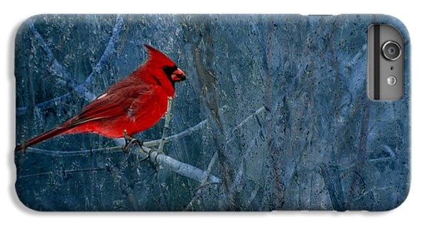 Northern Cardinal IPhone 6 Plus Case by Thomas Young
