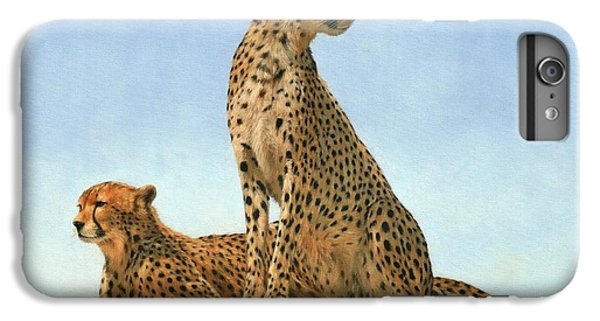 Cheetahs IPhone 6 Plus Case by David Stribbling