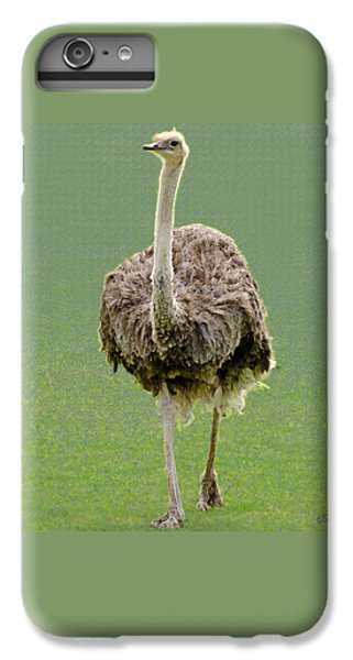 Emu IPhone 6 Plus Case by Ellen Henneke