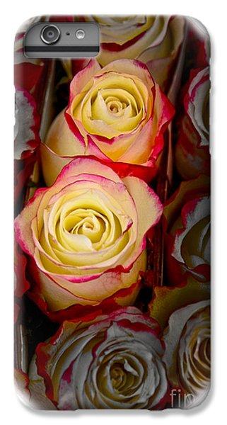 Love Is A Rose IPhone 6 Plus Case by Al Bourassa