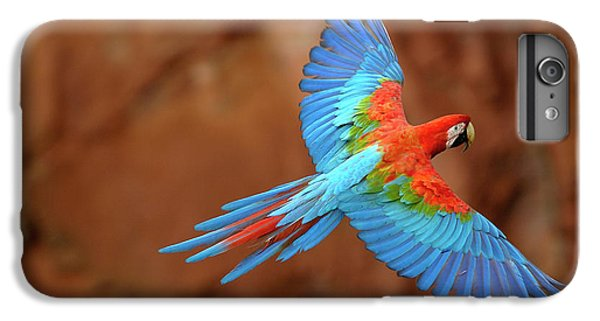 Red And Green Macaw Flying IPhone 6 Plus Case by Pete Oxford