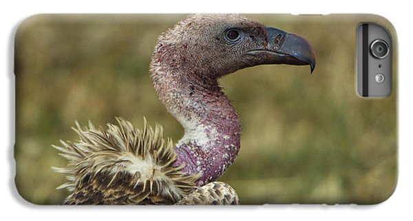 Ruppells Vulture IPhone 6 Plus Case by John Shaw
