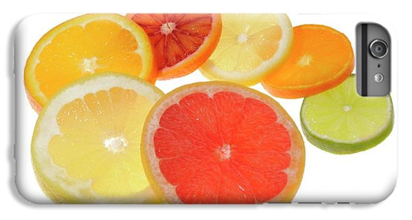 Slices Of Citrus Fruit IPhone 6 Plus Case by Cordelia Molloy