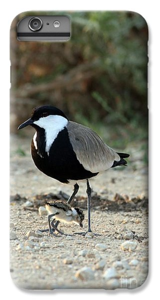 Spur-winged Plover And Chick IPhone 6 Plus Case by PhotoStock-Israel