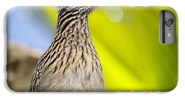 The Roadrunner  IPhone 6 Plus Case by Saija  Lehtonen