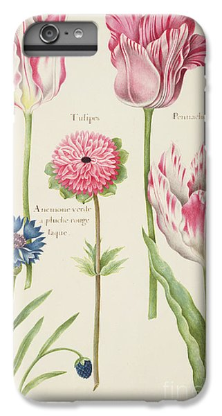 Tulips IPhone 6 Plus Case by Nicolas Robert
