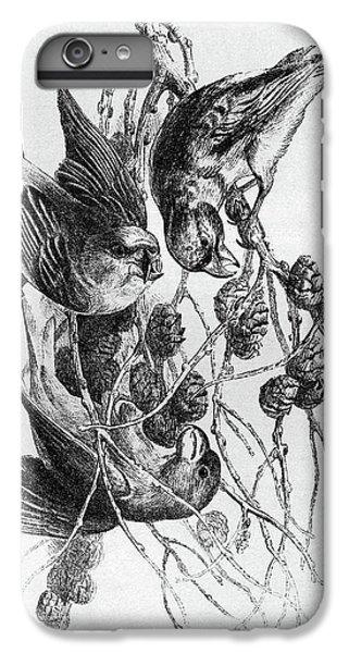 Blackburn Birds, 1895 IPhone 6 Plus Case by Granger