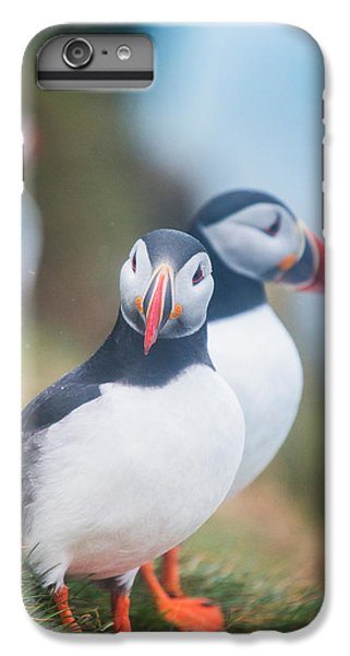Atlantic Puffins Fratercula Arctica IPhone 6 Plus Case by Panoramic Images