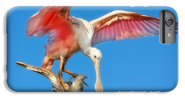 Cleared For Takeoff IPhone 6 Plus Case by Mark Andrew Thomas