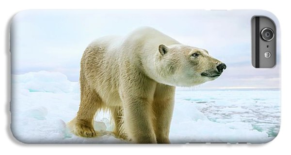 Close Up Of A Standing Polar Bear IPhone 6 Plus Case by Peter J. Raymond