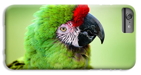 Parrot IPhone 6 Plus Case by Sebastian Musial