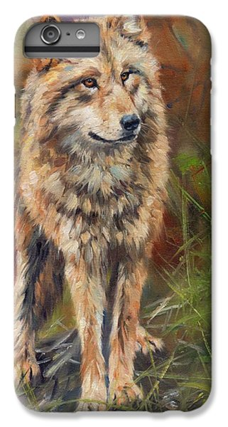 Grey Wolf IPhone 6 Plus Case by David Stribbling