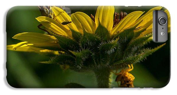 A Bugs World IPhone 6 Plus Case by Ernie Echols