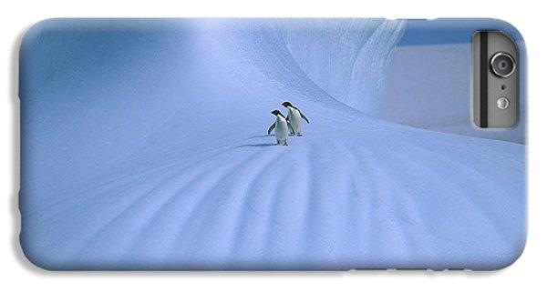 Adelie Penguins On Iceberg Antarctica IPhone 6 Plus Case by Peter Sinden