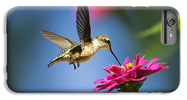 Art Of Hummingbird Flight IPhone 6 Plus Case by Christina Rollo
