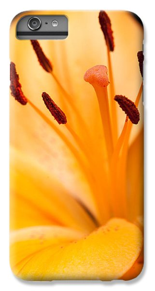 Asian Lily IPhone 6 Plus Case by Sebastian Musial