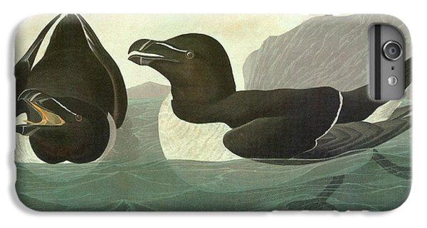 Audubon Razorbill IPhone 6 Plus Case by Granger