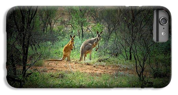 Australia, New South Wales, Broken IPhone 6 Plus Case by Rona Schwarz