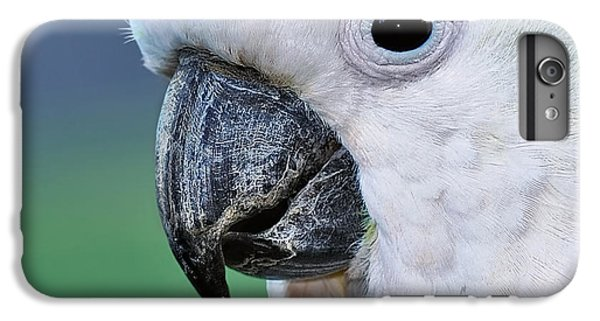 Australian Birds - Cockatoo Up Close IPhone 6 Plus Case by Kaye Menner