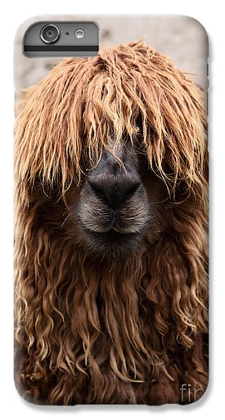 Bad Hair Day IPhone 6 Plus Case by James Brunker