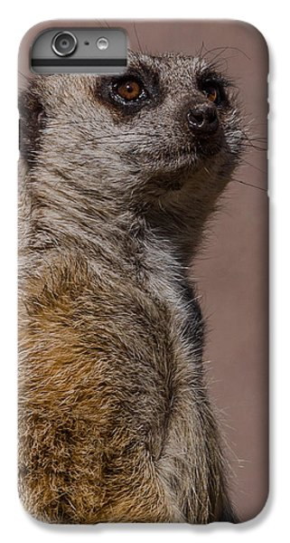 Bad Whisker Day IPhone 6 Plus Case by Ernie Echols