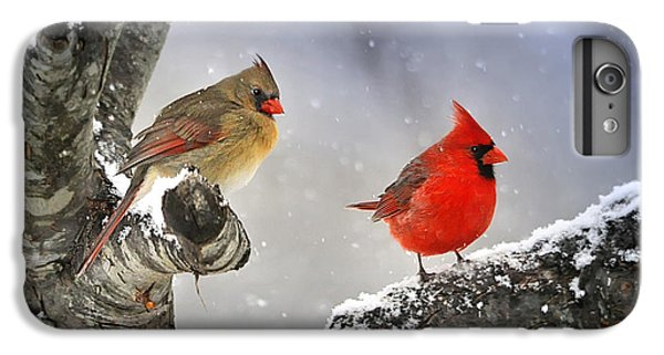 Beautiful Together IPhone 6 Plus Case by Nava Thompson