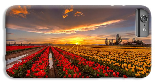 Beautiful Tulip Field Sunset IPhone 6 Plus Case by Mike Reid