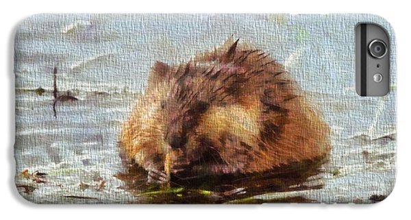 Beaver Portrait On Canvas IPhone 6 Plus Case by Dan Sproul