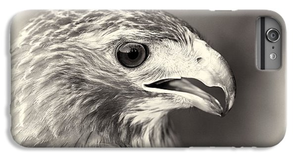 Bird Of Prey IPhone 6 Plus Case by Dan Sproul