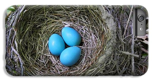 Birds Nest American Robin IPhone 6 Plus Case by Christina Rollo