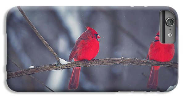 Birds Of A Feather IPhone 6 Plus Case by Carrie Ann Grippo-Pike