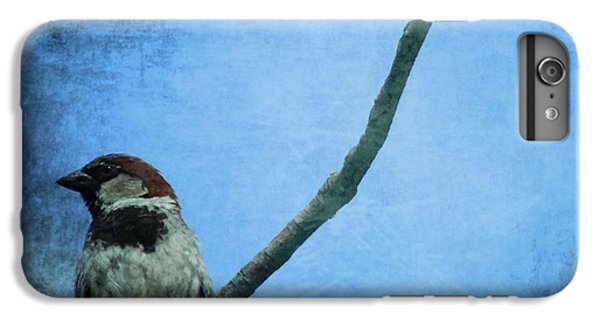 Sparrow On Blue IPhone 6 Plus Case by Dan Sproul
