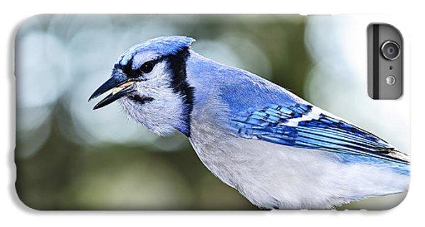 Blue Jay Bird IPhone 6 Plus Case by Elena Elisseeva
