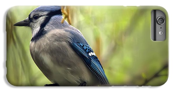 Blue Jay On A Misty Spring Day IPhone 6 Plus Case by Lois Bryan