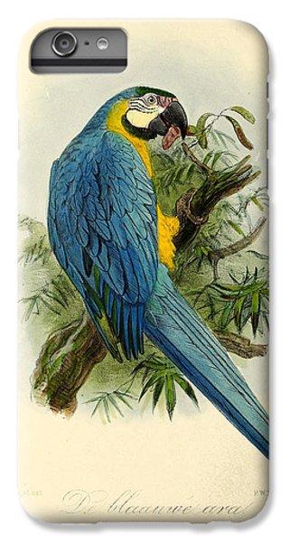 Blue Parrot IPhone 6 Plus Case by J G Keulemans