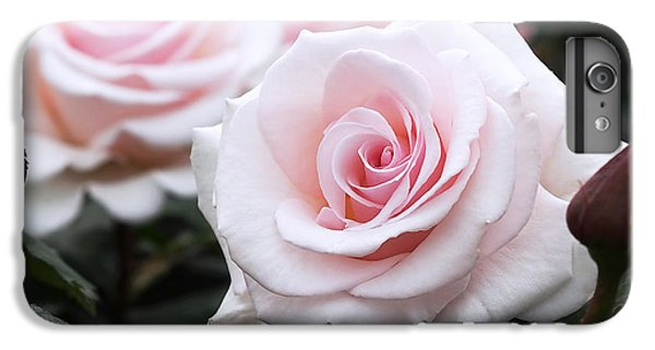 Blush Pink Roses IPhone 6 Plus Case by Rona Black