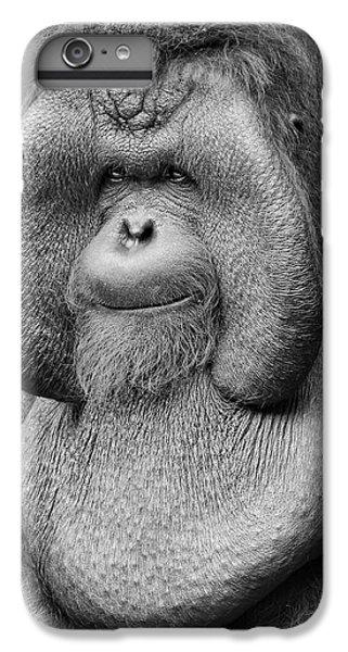 Bornean Orangutan IIi IPhone 6 Plus Case by Lourry Legarde