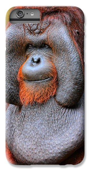 Bornean Orangutan Iv IPhone 6 Plus Case by Lourry Legarde
