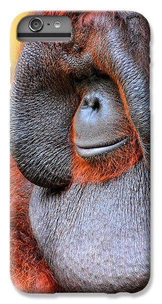 Bornean Orangutan Vi IPhone 6 Plus Case by Lourry Legarde